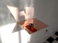 VICE VERSA. polished copper shelf, polished copper plate, motor, contact microphone, motion sensor. (sunlit).