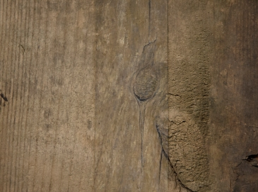 Superstratum (Wood), detail. oil paint on masking tape and found wood. 2014.
