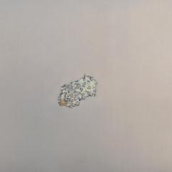 Caput Mortuum I (VI). oil paint on aluminum, 61 x 46 cm, 2012