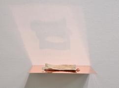 Caput Mortuum II (I). oil paint on aluminum foil, bone, copper, light. 31 x 23 x 6 cm, 2011