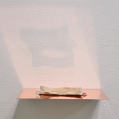 Caput Mortuum II (I). oil paint on aluminum foil, bone, copper, light. 31 x 23 x 6 cm, 2011