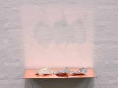 Caput Mortuum II (V). oil paint on aluminum foil, sea shell, copper, light. 23 x 13.5 x 5 cm, 2012