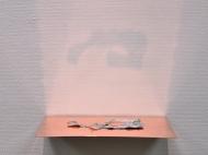 Caput Mortuum II (III). oil paint on aluminum foil, bone, copper, light. 28 x 23 x 5 cm, 2012