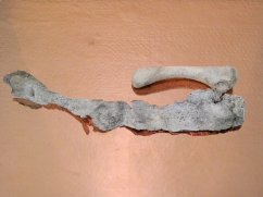 Caput Mortuum II (III). Detail view. oil paint on aluminum foil, bone, copper, light. 28 x 23 x 5 cm, 2012