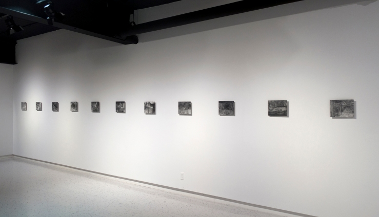 217, installation view